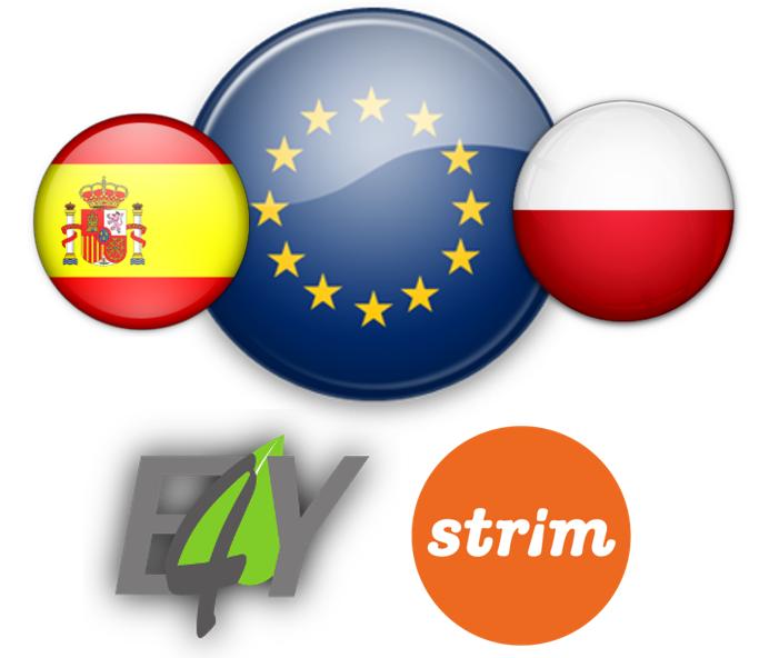 Collaboration with Stowarzyszenie Rozwoju i Integracji Młodzieży STRIM